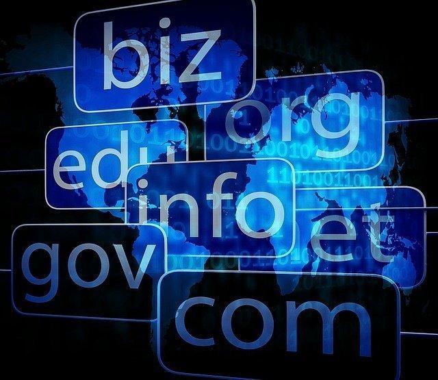 Domain hosting website